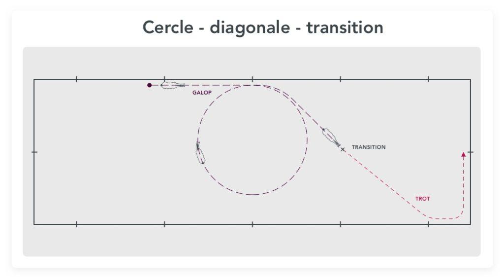 cercle diagonale transition exercice de dressage pour gagner en contrôle