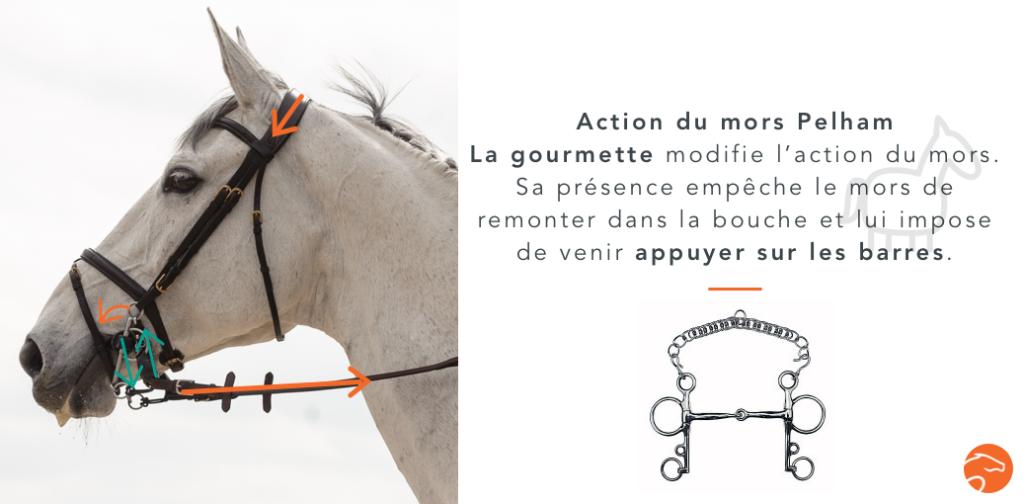 action mors pelham cheval
