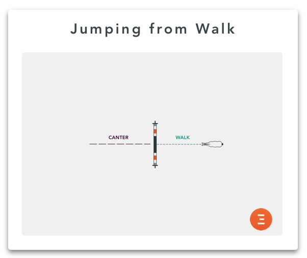 Jumping from walk, an exercise to strengthen hindquarter muscles