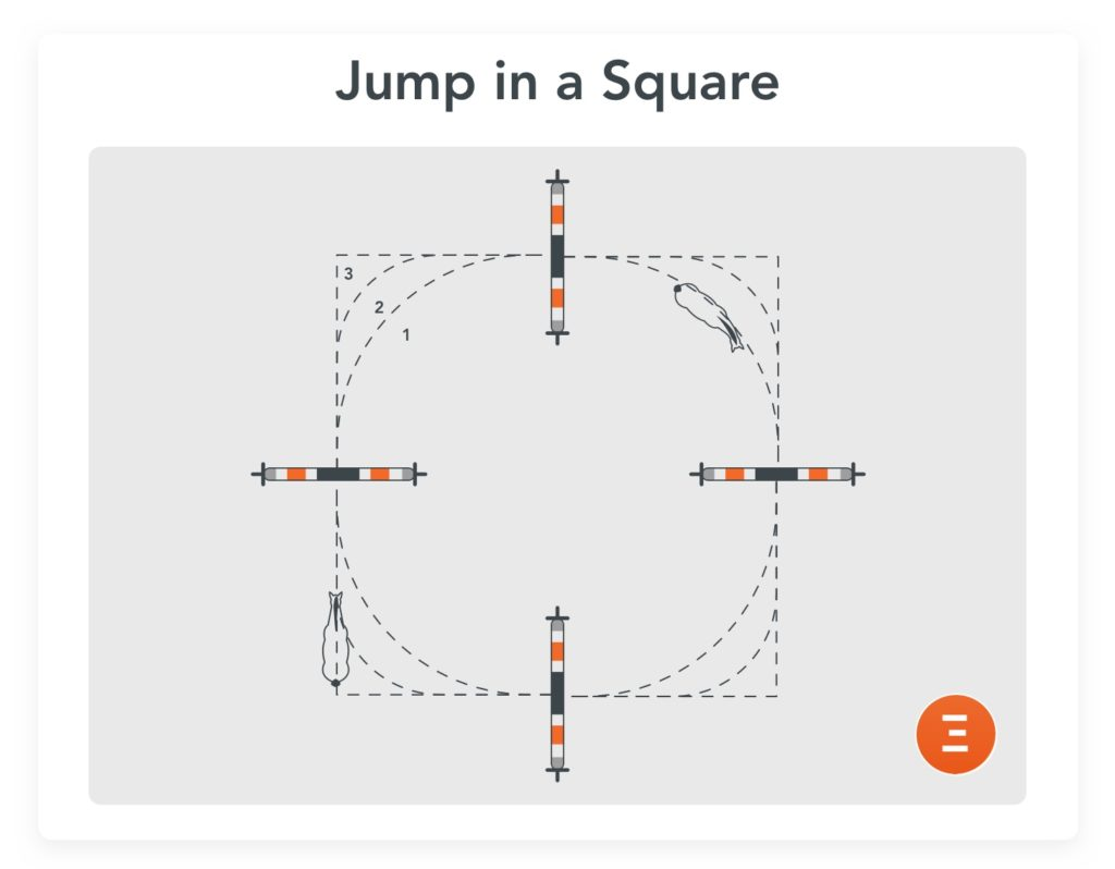 Jump in a square, an exercise to prepare for a competition