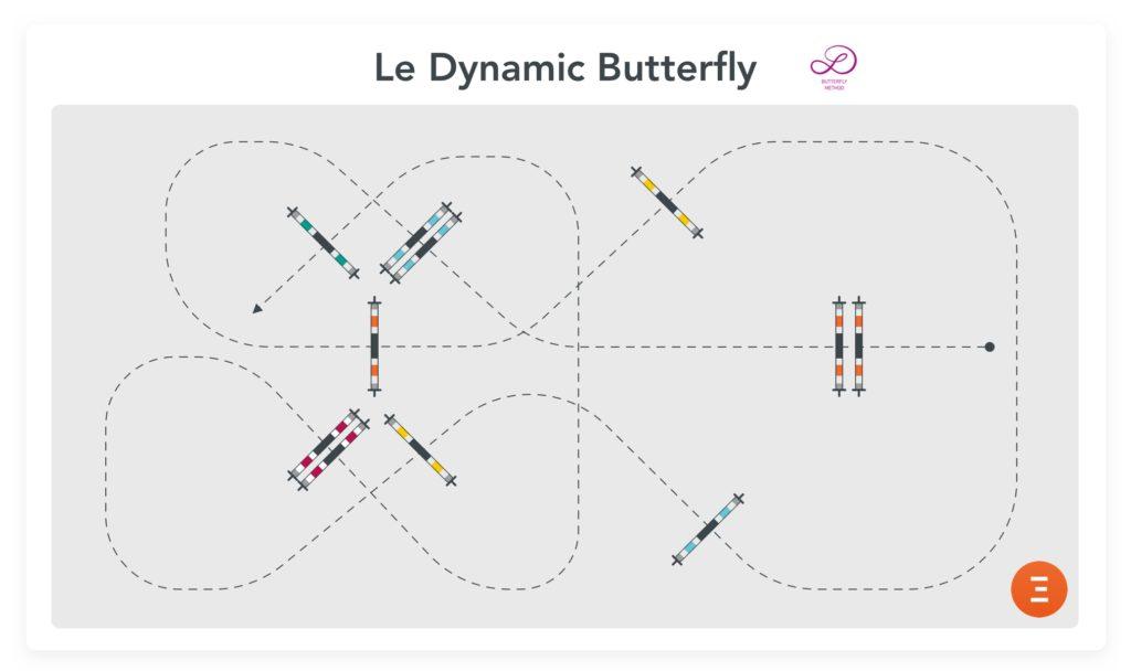 Le Dynamic Butterfly de Luciana Diniz