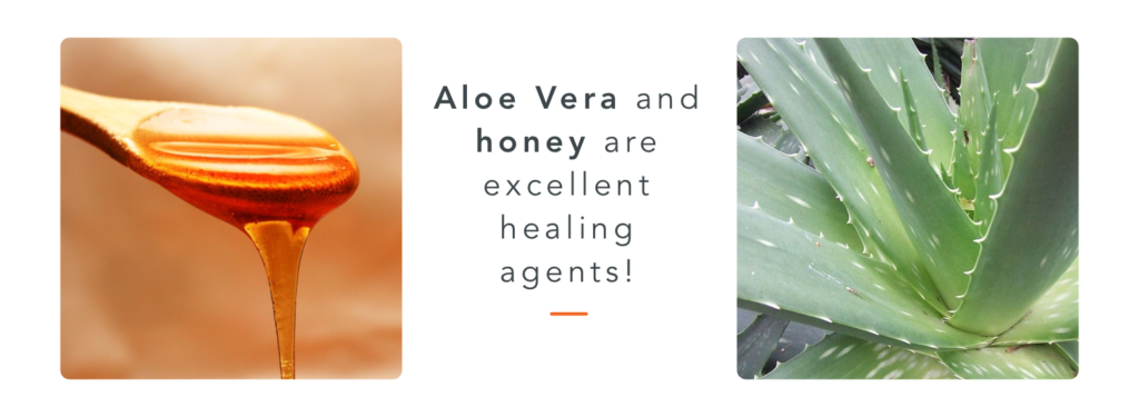 Aloe and honey, good healing agents to keep in your horse first aid kit