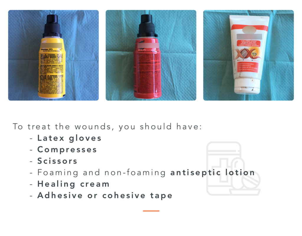 All you need to treat wounds : gloves, compresses, scissors, antiseptic lotion, healing cream and adhesive / cohesive tape