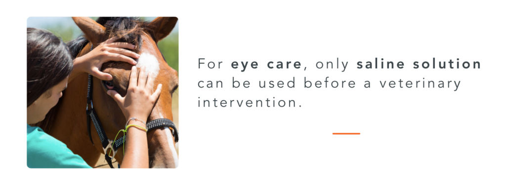 Saline solution to have in your horse first aid kit