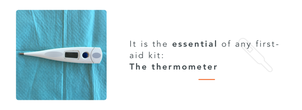 A thermometer, necessary for a horse first aid kit